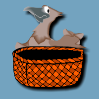 Main concepts: The Bird and the Basket